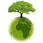 Planete verte arbre